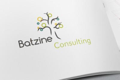 Batzine consulting